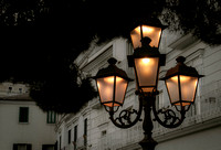 The Glow of the Lamp Post